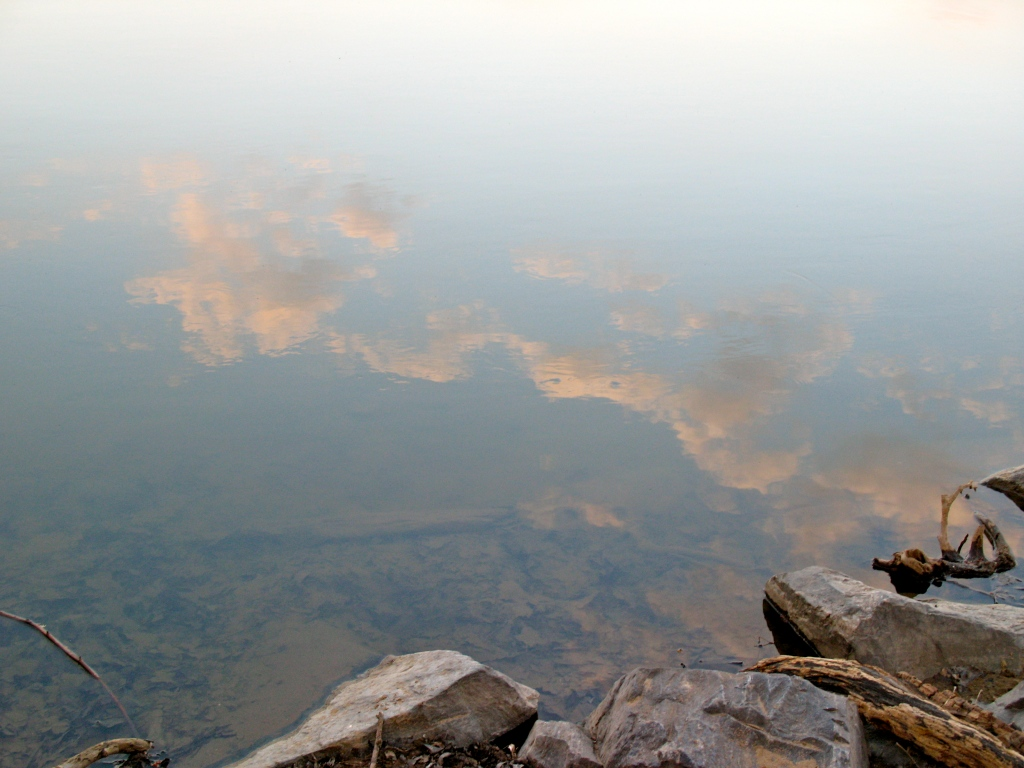 A reflection of clouds at the river's edge.