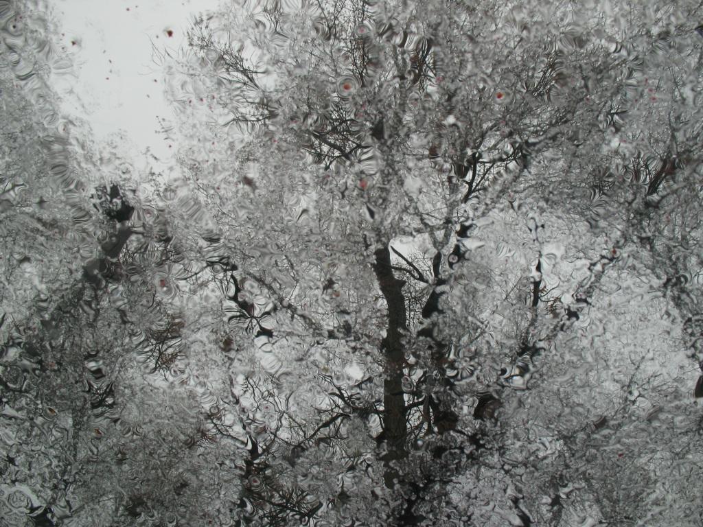 rain-on-sunroof